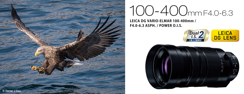 Panasonic LEICA DG VARIO-ELMAR 100-400mm/F4.0-6.3 ASPH./POWER O.I.S.